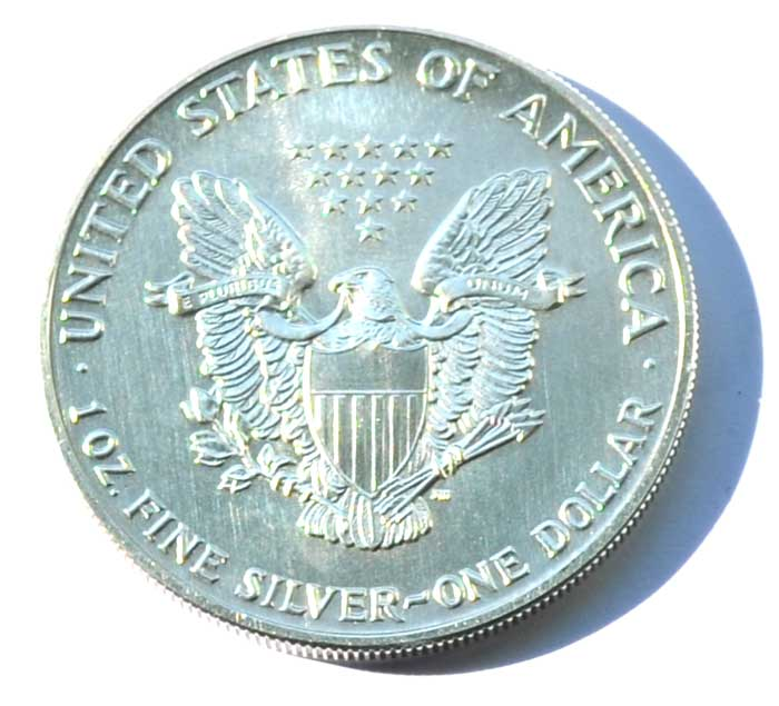 Usa 1 Dollar American Eagle 1 Oz Silber 1991 Nes