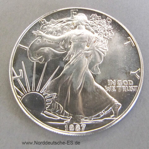 1 OZ American Eagle Silberdollar USA