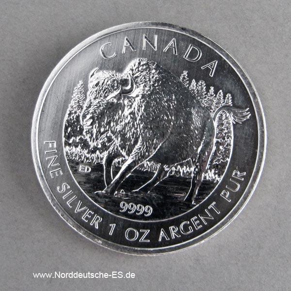 Kanada 1 oz Silber 2013 Bison5 Dollar