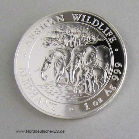 Somalia African Wildlife 1 oz Elephant 2013 Silber
